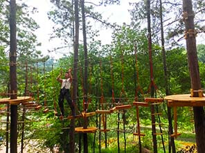 ropes park, adventure park, forest adventure course